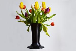 wazonsrczarnytulipy 1